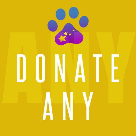donate_ny