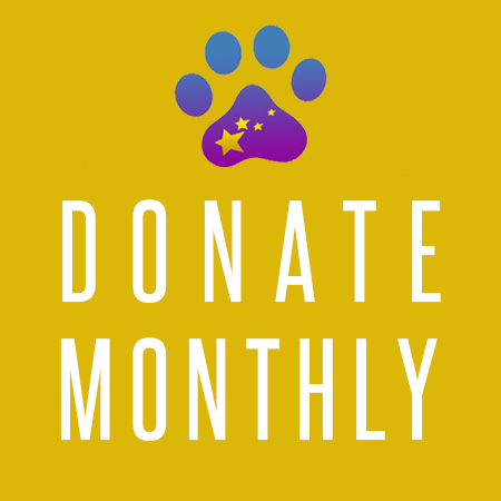 donate_monthly